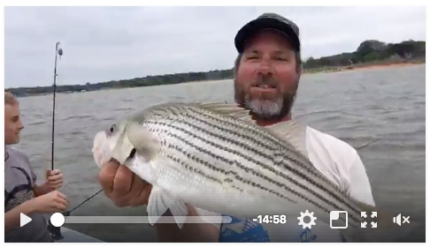 Flefly - striping fishing on lake Texoma
